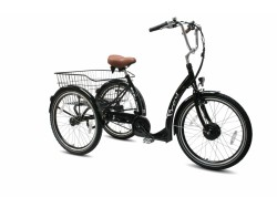Volwassen driewieler elektrisch - Troy e-bike Easy ride Nexus 7-spd